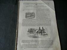 1841 NAPOLEONE BAIONETTA BARONE ANTONIO TRASMONDO POMPEI INSETTO GOLIA GIGANTE