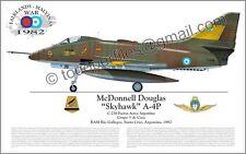 A-4 P Skyhawk Fuerza Aerea Argentina - Falklands/Malvinas - Airplane Profile