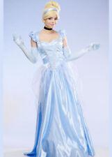 Womens Long Classic Cinderella Costume