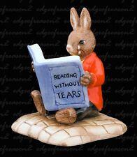 Royal Doulton Bunnykins William lectura sin lágrimas
