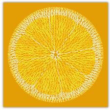 The Stone Roses Lemon Canvas or Poster Song Lyrics Ian Brown Mani Reni