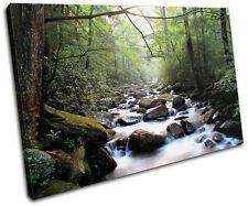 Forest Stream ECO Landscapes SINGLE LONA pared arte Foto impresion