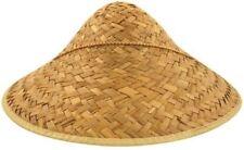 Fancy Dress Chinos China peón sombrero de paja + Bigote