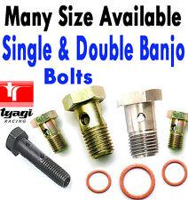 Metric BSP Banjo Bolt Brake Line Fitting Fuel Hose Hydraulic Bolts Double Banjo