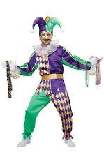Brand New Festive Mardi Gras Jester Clown Men Adult Costume