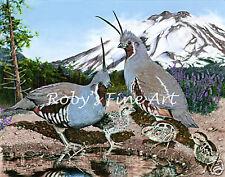 """Mountain Quail Art Print """"Covey Cove"""" Mt Lassen Quail 8""""x10"""" Giclee by Roby Baer"""