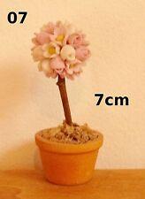 plante, arbuste fleuri,ornement,vitrine,maison de poupée, dollshouse, jardin S11
