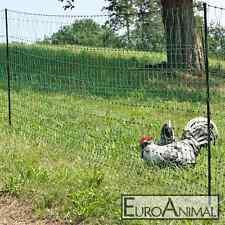 Geflügelnetz Euronetz Hühnerzaun Geflügelzaun Zaun Hühner 15m 25m 50m Agility