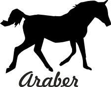 2 x Auto Aufkleber ARABER Pferd 2x Car Sticker Arabian Horse ww. shipping