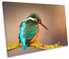 Kingfisher Bird Wildlife SINGLE CANVAS WALL ART Print Picture