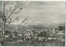 TARCENTO - PANORAMA (UDINE) 1961