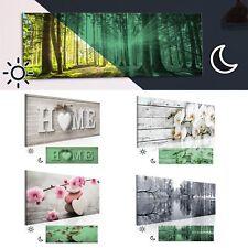 BILDER LEINWAND Bild Wald Natur Home Blumen Nachleuchtend Leuchtbilder Wandbild