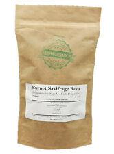 Burnet Saxifrage Root - Pimpinella saxifraga # Herba Organica # Burnet-Saxifrage