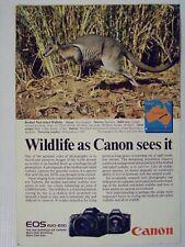 1988 Canon EOS 620/650 SLR Camera Wallaby Magazine Print Advertisement Page