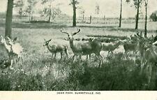 Summitville,IN. Greetings from Deer Park   1919