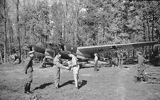 WWII Photo Focke-Wulf Fw 189 in Forest Dispersal  WW2