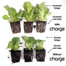 Ecothrive Charge Plant Growth Fertiliser Soil Conditioner BioStimulant Additives