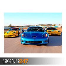 CORVETTE Racing Sebring CARS (0577) POSTER stampa A0 A1 A2 A3-seconda metà prezzo!