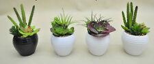 Cactus Plants in Ceramic Pot, Artificial Succulent Arrangement Home & Office