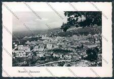 Catanzaro Nicastro Foto FG cartolina D8705 SZD