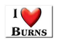 SOUVENIR USA - COLORADO GIFT FRIDGE MAGNET AMERICA I LOVE BURNS (EAGLE COUNTY)