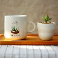 Japanese style succulent plants ceramic coffee mugs tea hot choc juice soup mug
