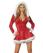 Dreamgirl Sleigh Belle Santa Helper Adult Womens Christmas Xmas Costume 4552