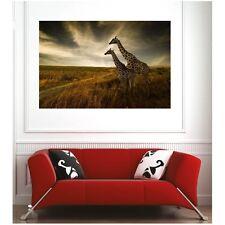 Affiche poster girafe 26390899 Art déco Stickers