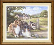 Shetland sheepdog Shelties chien imprimer par Lynn Paterson