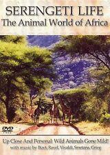 Serengeti Life - Animal World of Africa
