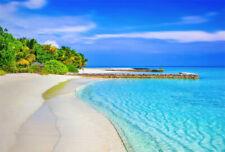 Photo Backdrop Tropical Summer Seaside Beach Blue Sky Background Studio Props