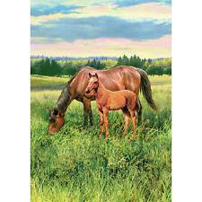 Horse Pasture Decorative Flag