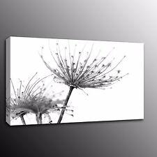 Home Decor Black Flowers Dandelions Canvas Art Print Poster Oil Painting Picture