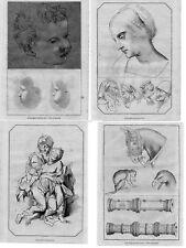 Stampe antiche DISEGNI Codice VALLARDI Pisanello 1858