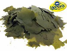 HERONS PREBIOTIC Spirulina Forte Flakes TROPICAL FISH FOOD Cichlid Mbuna Marine