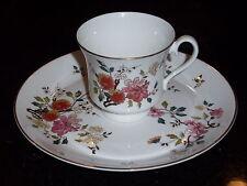 Royal Albert China Garden New Romance Teacup and Plate ~~England