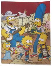 "Simpsons Fox Tv Show Mini Poster 2007 14""X10 1/2"" Simpson Family Jug Band"