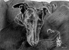 A4 A3 or A2 Black 4 B&W Greyhound Dog Art Print of original drawing RussellArt