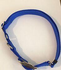 "10  1/"" Nickel Plated Double Bar Buckle   Dog Collar Carter Pet Supply"