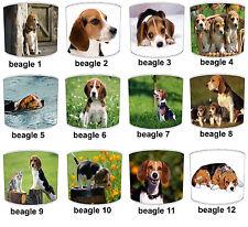 BEAGLE Cane Designs Paralumi Ideale Da Abbinare Beagle Cane Cuscino & Beagle Cane Letto