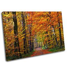 Los árboles de otoño paisaje DE LONA pared arte impresión enmarcado cuadro Premium 004