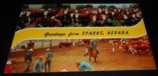 Vintage Postcard Greetings Sparks Nevada Cattle Cowboys