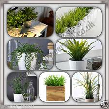 IKEA FEJKA Artificial potted plant,Corkscrew Rush,Grass, House Bamboo, Succulent