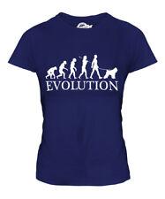 Bouvier Des Flandres Evolution Of Man Ladies T-Shirt Tee Top Dog Gift Walker