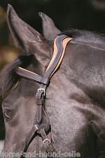 Barefoot Contour Physio Kopfstück - 4 Größen & 2 Farben- Horse & Hound Celle