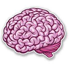 2 X cerebro pegatina de vinilo Ipad Laptop coche calcomanía de casco de niños Patineta divertido # 4448