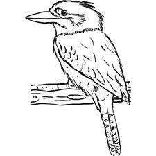 'Kookaburra' Rubber Stamp (RS025489)
