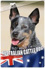 ! AUSTRALIAN CATTLE DOG ! Metall Warnschild .07