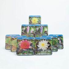 Jetzt einsetzen! Komplettes Wasserpflanzenpaket - Teichpflanzen für den Garten