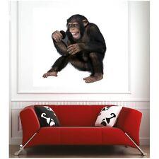 Affiche poster singe miroir  30906913 Art déco Stickers